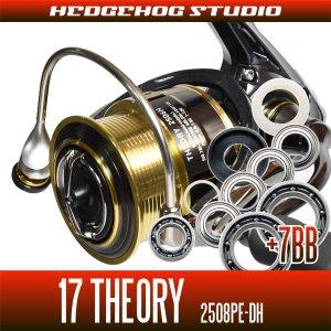 画像1: 17セオリー 2508PE-DH用 MAX14BB フルベアリングチューニングキット