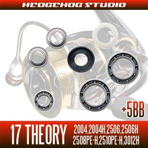 画像2: 17セオリー 2004,2004H,2506,2506H,2508PE-H,2510PE-H,3012H用 MAX12BB フルベアリングチューニングキット
