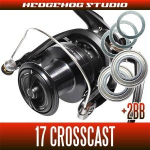 画像1: 17クロスキャスト 4000,4000QD,4500,5000,5500,6000用 MAX5BB フルベアリングチューニングキット