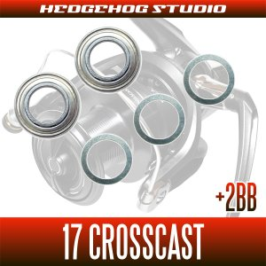 画像2: 17クロスキャスト 4000,4000QD,4500,5000,5500,6000用 MAX5BB フルベアリングチューニングキット