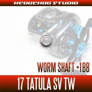 画像2: 【ダイワ】17タトゥーラSV TW用 ウォームシャフトベアリング(+1BB)