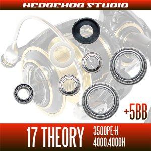 画像2: 17セオリー 3500PE-H,4000,4000H用 MAX12BB フルベアリングチューニングキット