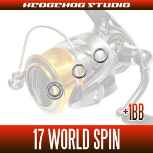 画像2: 17ワールドスピン用 MAX2BB フルベアリングチューニングキット