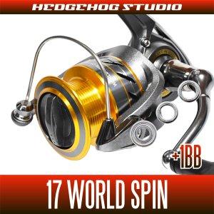 画像1: 17ワールドスピン用 MAX2BB フルベアリングチューニングキット