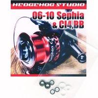 06セフィア,09セフィア,08セフィアCI4,07セフィアBB,10セフィアBB,11セフィアBB用 ラインローラー2BB仕様チューニングキット Ver.1 (2004年〜2010年モデル対応)