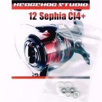 12セフィアCI4+用 ラインローラー2BB仕様チューニングキット Ver.2 (2012年モデル対応)