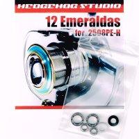 12エメラルダス 2508PE-H用 MAX12BB フルベアリングチューニングキット