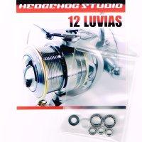 12ルビアス 1003用 MAX12BB フルベアリングチューニングキット