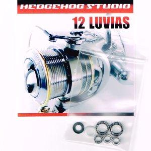 画像1: 12ルビアス 2004用 MAX12BB フルベアリングチューニングキット