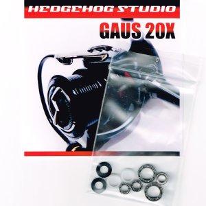 画像1: GAUS 20X用 MAX11BB フルベアリングチューニングキット