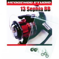 13セフィアBB用 ラインローラー2BB仕様チューニングキット Ver.2 (2012〜2013年モデル対応)