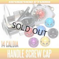 14カルディア(2004〜3000)対応 ハンドルスクリューキャップ HSC-14CAL-M