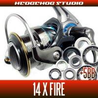 14Xファイア 2510PE-H,2510R-PE,3012H用 MAX11BB フルベアリングチューニングキット