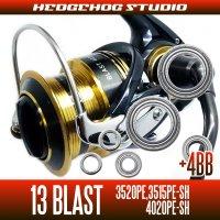 ダイワ 13ブラスト 3520PE,3515PE-SH,4020PE-SH用 MAX10BB フルベアリングチューニングキット
