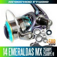 14エメラルダスMX 2508PE,2508PE-H用 MAX11BB フルベアリングチューニングキット
