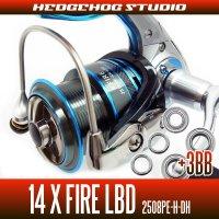 14XファイアLBD 2508PE-H-DH用 MAX9BB フルベアリングチューニングキット