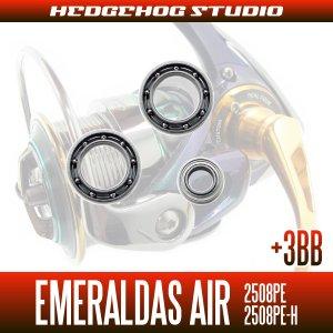 画像2: 15エメラルダスAIR 2508PE,2508PE-H MAX12BB フルベアリングチューニングキット