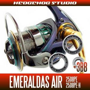 画像1: 15エメラルダスAIR 2508PE,2508PE-H MAX12BB フルベアリングチューニングキット