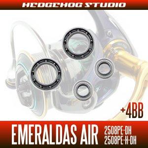 画像2: 15エメラルダスAIR 2508PE-DH,2508PE-H-DH MAX14BB フルベアリングチューニングキット