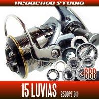 15ルビアス 2508PE-DH用 MAX14BB フルベアリングチューニングキット