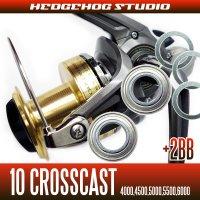 10クロスキャスト用 MAX5BB フルベアリングチューニングキット