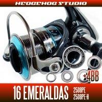 16エメラルダス 2508PE,2508PE-H用 MAX10BB フルベアリングチューニングキット