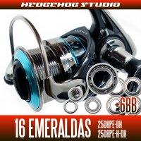 16エメラルダス 2508PE-DH,2508PE-H-DH用 MAX12BB フルベアリングチューニングキット
