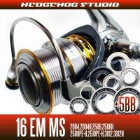16 EM MS 2004,2004H,2506,2506H,2508PE-H,2510PE-H,3012,3012H用 MAX11BB フルベアリングチューニングキット