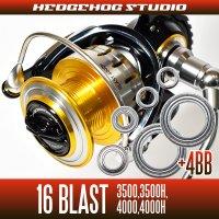 16ブラスト3500,3500H,4000,4000H用 MAX10BB フルベアリングチューニングキット