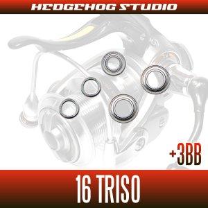 画像2: 16トライソ 2000H-LBD,2500LBD,2500H-LBD,3000H-LBD用 MAX8BB フルベアリングチューニングキット