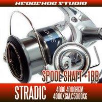シマノ 15ストラディック 4000,4000HGM,4000XGM,C5000XG用 スプールシャフト1BB仕様チューニングキット Lサイズ
