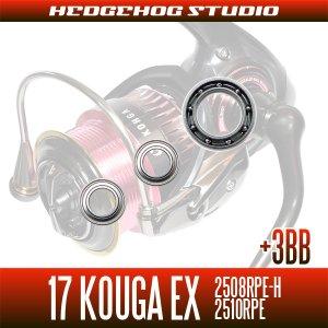 画像2: 17紅牙EX 2508RPE-H,2510RPE用 MAX14BB フルベアリングチューニングキット