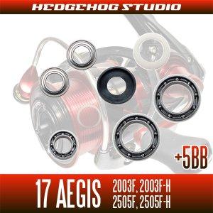 画像2: 17イージス 2003F,2003F-H,2505F,2505F-H用 MAX12BB フルベアリングチューニングキット