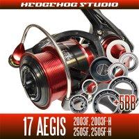 17イージス 2003F,2003F-H,2505F,2505F-H用 MAX12BB フルベアリングチューニングキット