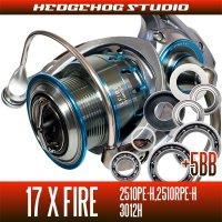17Xファイア 2510PE-H,2510RPE-H,3012H用 MAX12BB フルベアリングチューニングキット