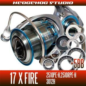 画像1: 17Xファイア 2510PE-H,2510RPE-H,3012H用 MAX12BB フルベアリングチューニングキット