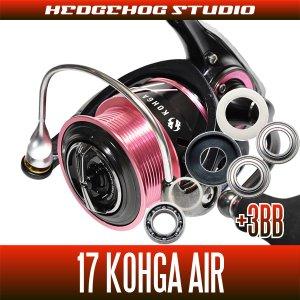 画像1: 17紅牙AIR 2508PE-H用 MAX12BB フルベアリングチューニングキット