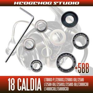 画像2: 18カルディア LT1000S-P, LT2000S, LT2000S-XH, LT2500, LT2500-XH, LT2500S, LT2500S-XH, LT3000-CXH, LT4000-CXH, LT4000S-C, LT5000D-CXH, LT5000S-CXH用 MAX11BB フルベアリングチューニングキット (ダイワ製スピニングリール)
