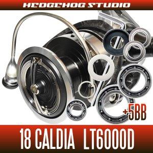 画像1: 18カルディア LT6000D用 MAX11BB フルベアリングチューニングキット (ダイワ製スピニングリール)