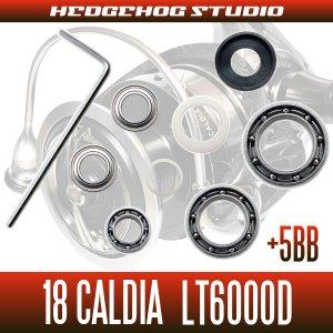 画像2: 18カルディア LT6000D用 MAX11BB フルベアリングチューニングキット (ダイワ製スピニングリール)