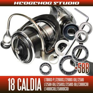 画像1: 18カルディア LT1000S-P, LT2000S, LT2000S-XH, LT2500, LT2500-XH, LT2500S, LT2500S-XH, LT3000-CXH, LT4000-CXH, LT4000S-C, LT5000D-CXH, LT5000S-CXH用 MAX11BB フルベアリングチューニングキット (ダイワ製スピニングリール)
