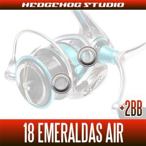 画像2: 18エメラルダス AIR LT3000S-CXH(シングルハンドル)用 MAX11BB フルベアリングチューニングキット