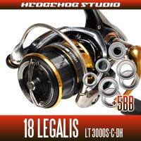 18レガリス LT3000S-C-DH(ダブルハンドル)用 MAX10BB フルベアリングチューニングキット