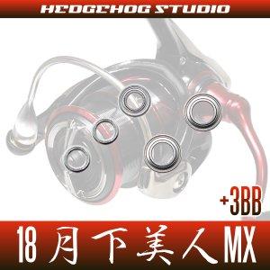 画像2: 18月下美人MX LT1000S-P, LT2000S-P, LT2000S用 MAX8BB フルベアリングチューニングキット