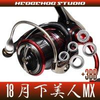 18月下美人MX LT1000S-P, LT2000S-P, LT2000S用 MAX8BB フルベアリングチューニングキット