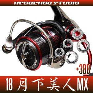 画像1: 18月下美人MX LT1000S-P, LT2000S-P, LT2000S用 MAX8BB フルベアリングチューニングキット