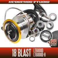 18ブラスト LT6000D, LT6000D-H用 MAX10BB フルベアリングチューニングキット