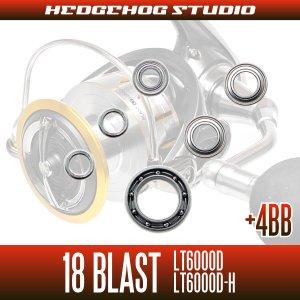画像2: 18ブラスト LT6000D, LT6000D-H用 MAX10BB フルベアリングチューニングキット