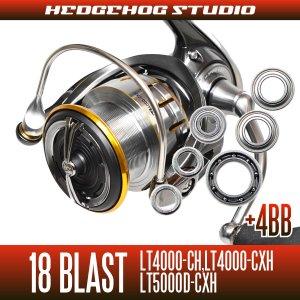 画像1: 18ブラスト LT4000-CH, LT4000-CXH, LT5000D-CXH用 MAX10BB フルベアリングチューニングキット