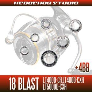 画像2: 18ブラスト LT4000-CH, LT4000-CXH, LT5000D-CXH用 MAX10BB フルベアリングチューニングキット